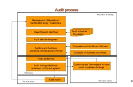 Quality Assurance Auditing
